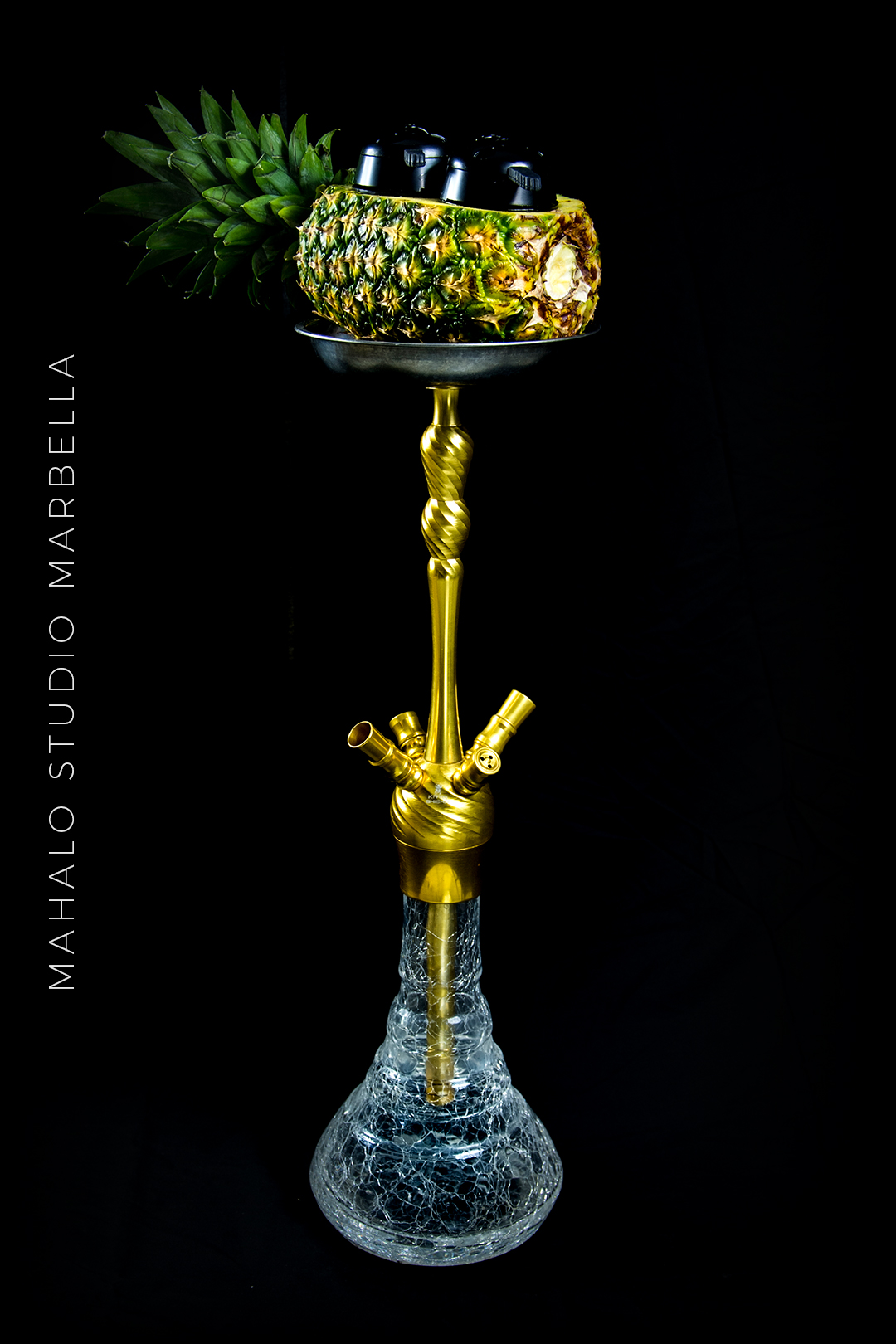 Pineapple Hookah Dark Black Background